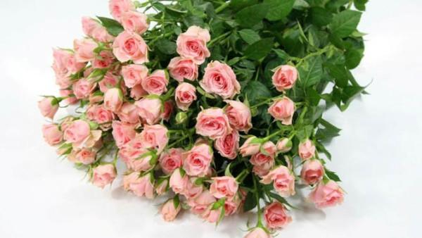 Букет из маленьких роз