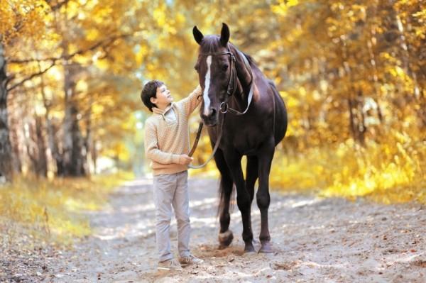 Прогулка на лошадях для ребенка