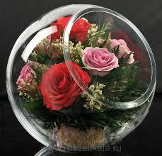 розы в вакууме