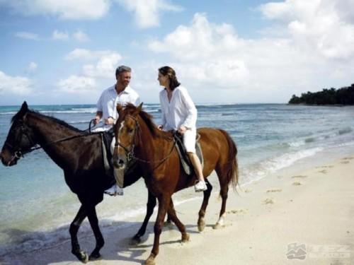 конная прогулка в подарок на серебряную свадьбу