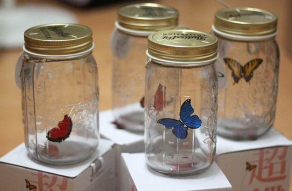 баночка с бабочками
